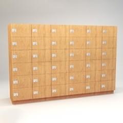 Day Locker 6T-182472 Small